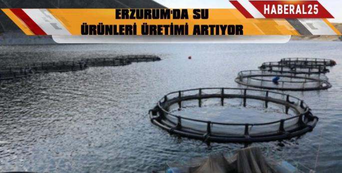 Erzurum'da Su Ürünleri Üretimi 968 Ton Artacak