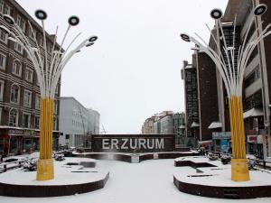 Erzurum'da yoğun kar yağışı etkili oluyor