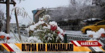 Oltu'dan Kartpostallık Kar Görüntüleri